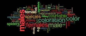 Dissertation_wordle_image_wordpress