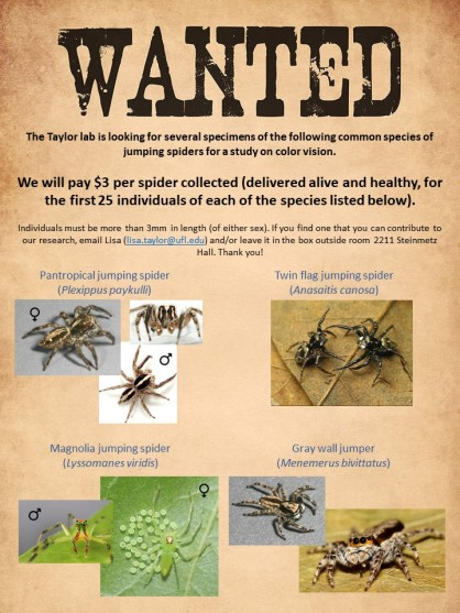 Spider_wanted_poster_v2